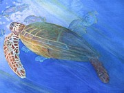 Green Sea Turtle Paintings - Sea Turtle II by Dee Durbin