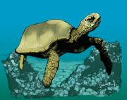 Tortoise Digital Art - Sea Turtle in the Coral Reef by Scott Rolfe
