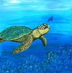 Ocean Turtle Painting Originals - Sea Turtle by Sabrina Zbasnik
