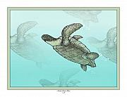 Sherry Holder Hunt Posters - Sea Turtles Poster by Sherry Holder Hunt