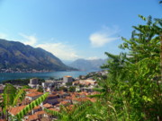 Village By The Sea Prints - Sea View from Kotor Print by Elizabeth Fontaine-Barr
