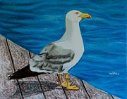 Puerto Rico Pastels Framed Prints - Seagull on the shore - Gaviota en la costa Framed Print by Melvin Rodriguez