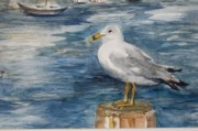 Dock Drawings Originals - Seagull by Siona Koubek
