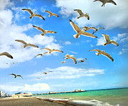 Flying Seagulls Originals - Seagulls at Worthing Sussex by Heather Lennox