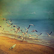 Square Tapestries Textiles - Seagulls Flying by Istvan Kadar Photography