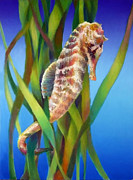 Sea Scape Paintings - Seahorse I among the Reeds by Nancy Tilles
