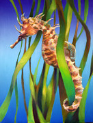 Graduated Background Framed Prints - Seahorse II among the Reeds Framed Print by Nancy Tilles
