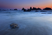 Seastacks Acrylic Prints - Seal Rock Dusk Acrylic Print by Mike  Dawson