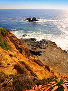 Heisler Park Prints - Seal Rock  Print by Linda Marshutz