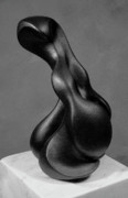 Black Sculpture Originals - Seals by Lonnie Tapia