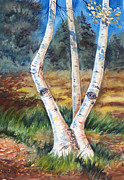 Kristine Plum Acrylic Prints - Searching Birch Acrylic Print by Kristine Plum