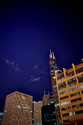 Chicago Night Scene Posters - Sears Of Night Poster by Emily Stauring
