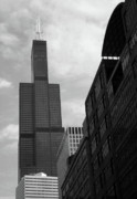 Willis Tower Framed Prints - Sears Tower b-w Framed Print by Ely Arsha