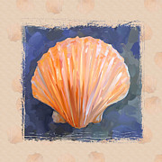 Seashell Art Posters - SeaShell I Grunge with Border Poster by Jai Johnson