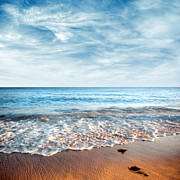Beach Scenery Metal Prints - Seashore Metal Print by Carlos Caetano