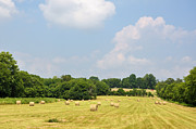 Tennessee Hay Bales Prints - Season Of Plenty Print by Jan Amiss Photography