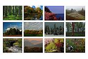 Fall Prints - Seasonal Greetings from New England  Print by Juergen Roth
