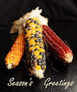 Fall Holiday Card Posters - Seasons Greetings- Thanksgiving Card No. 1 Poster by Luke Moore