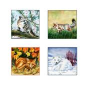 Seasons Of Fox Print by Antony Galbraith