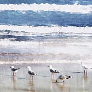 Seagulls Prints - Seaspray Print by Holly Kempe