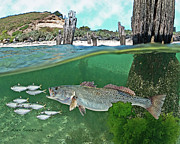 Tarpon Drawings Posters - Seatrout Attack Poster by Alex Suescun