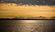 All - Seattle Sunset by Mandy Wiltse