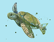 Green Sea Turtle Painting Prints - Seaturtle - sea turtle Print by Alison Fennell