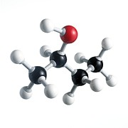 Sec Photo Prints - Sec-butanol Molecule Print by