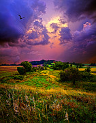 Environement Posters - Secluded Dream Poster by Phil Koch