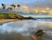 Makena Acrylic Prints - Secret Beach 5 Acrylic Print by Monica and Michael Sweet - Printscapes