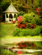 Dogwood Lake Framed Prints - Secret Garden Framed Print by Darren Fisher