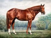 Canvas Painting Metal Prints - Secretariat Metal Print by Thomas Allen Pauly