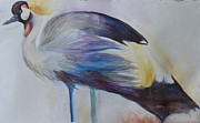 Paige Hval Art - Secretary Bird by Paige Hval