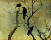 Canvas Crows Prints - Secretive Crows Print by Gothicolors And Crows