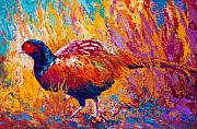 Pheasant Paintings - Secrets In The Grass - Pheasant by Marion Rose