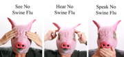 On Paper Photos - See no Swine flu  Hear no Swine flu   Speak no Swine flu by Michael Ledray