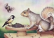 Animal Drawings - Seed For Two by Amy S Turner