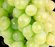 Green Grapes Prints - Seedless Print by Cheryl Young