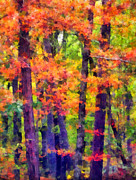 Robbers Metal Prints - Seeing The Forest Metal Print by Angelina Vick