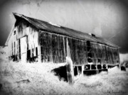Barn Digital Art Posters - Seen Better Days Poster by Julie Hamilton