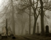 Graveyard Digital Art Prints - Seeped In Fog Print by Gothicolors With Crows