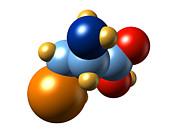 Selenocysteine, Molecular Model Print by Dr Mark J. Winter