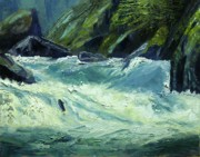 Salmon River Idaho Paintings - Selway-Wild and Scenic River- Idaho by Tom Siebert