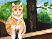 Fat Cat Framed Prints - Senior Portrait Framed Print by Laura Brightwood
