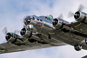 Airshows Photos - Sentimental Journey by Bill Lindsay