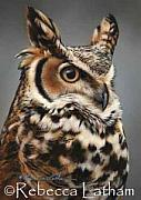 Rebecca Latham - Sentinel - Great Horned...