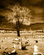 Gothic Graveyard Prints - Sepia Glow Print by Gothicolors And Crows