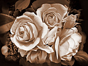 Dark Brown Framed Prints - Sepia Rose Flower Bouquet Framed Print by Jennie Marie Schell