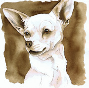 Dog Watercolor Framed Prints - Sepia Tone Chihuahua Dog Framed Print by Cherilynn Wood