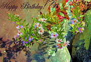 Aster Prints - September Birthday Aster Print by Kristin Elmquist